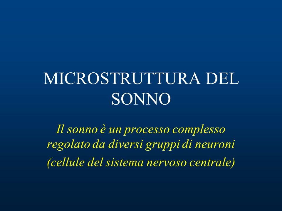 MICROSTRUTTURA DEL SONNO Il sonno è un processo complesso regolato da diversi gruppi di neuroni (cellule del sistema nervoso centrale)