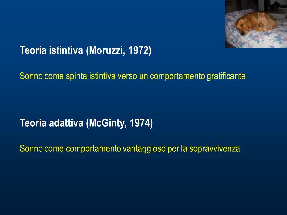 Teoria istintiva (Moruzzi, 1972) Sonno come spinta istintiva verso un comportamento gratificante Teoria adattiva (McGinty, 1974) Sonno come comportamento vantaggioso per la sopravvivenza
