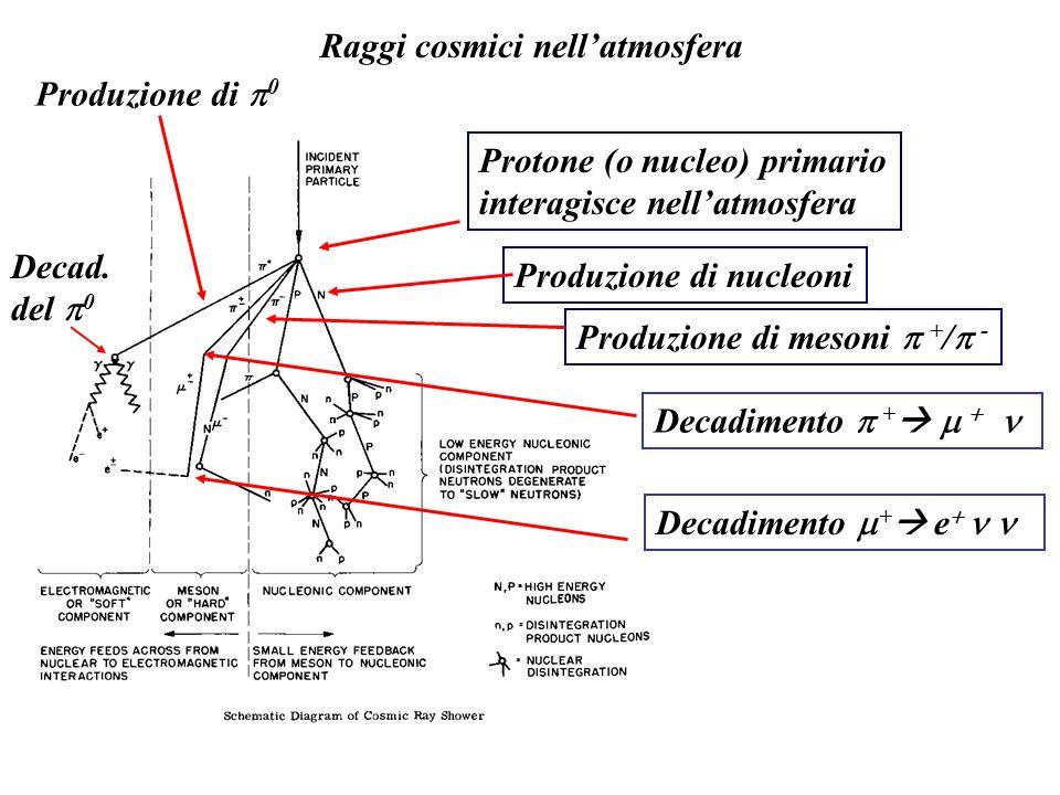 Raggi cosmici nellatmosfera Protone (o nucleo) primario interagisce nellatmosfera Produzione di mesoni + / - Produzione di 0 Produzione di nucleoni De