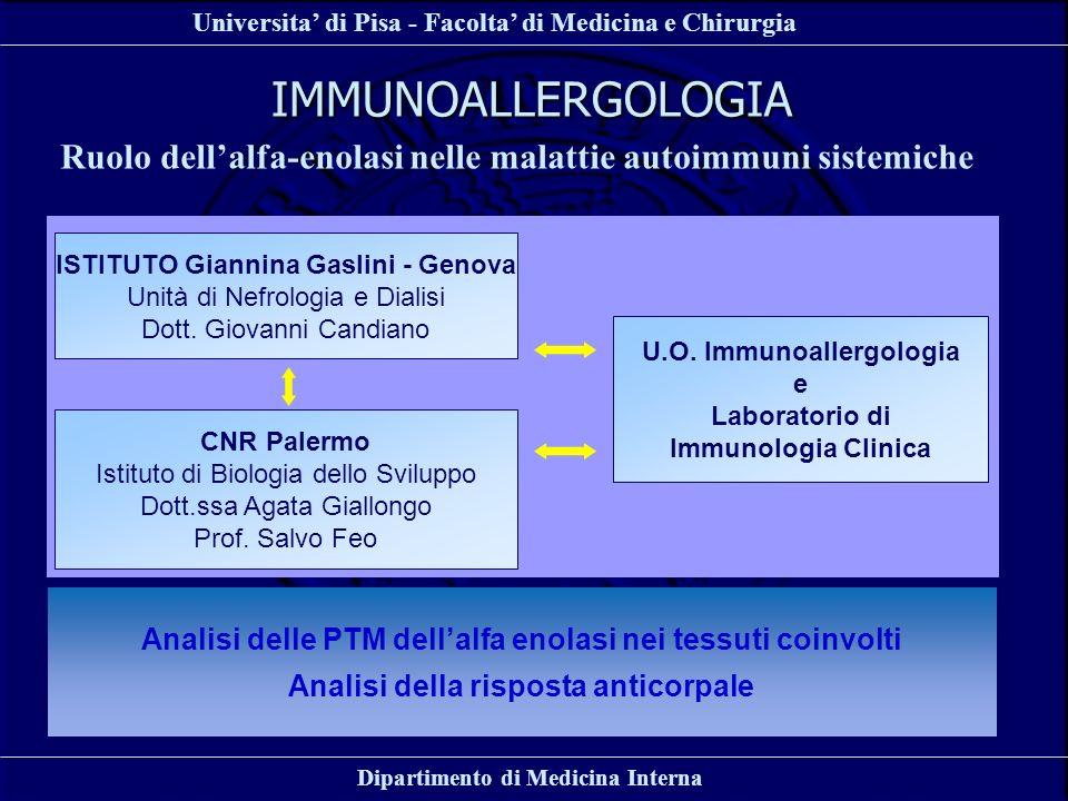 Universita di Pisa - Facolta di Medicina e Chirurgia Dipartimento di Medicina Interna IMMUNOALLERGOLOGIA Ruolo dellalfa-enolasi nelle malattie autoimm