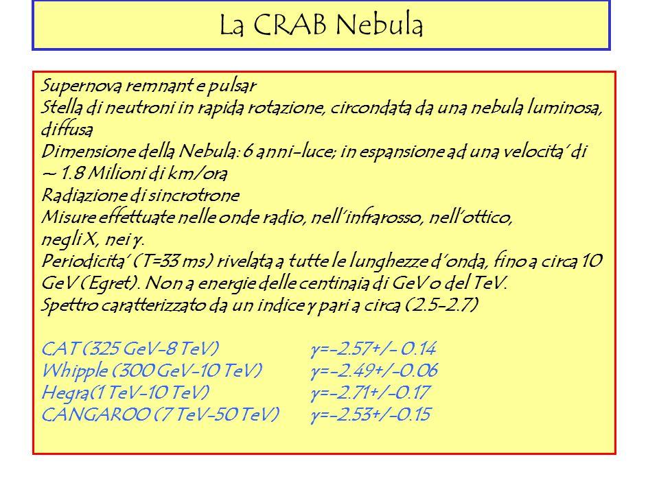 La CRAB Nebula Supernova remnant e pulsar Stella di neutroni in rapida rotazione, circondata da una nebula luminosa, diffusa Dimensione della Nebula: