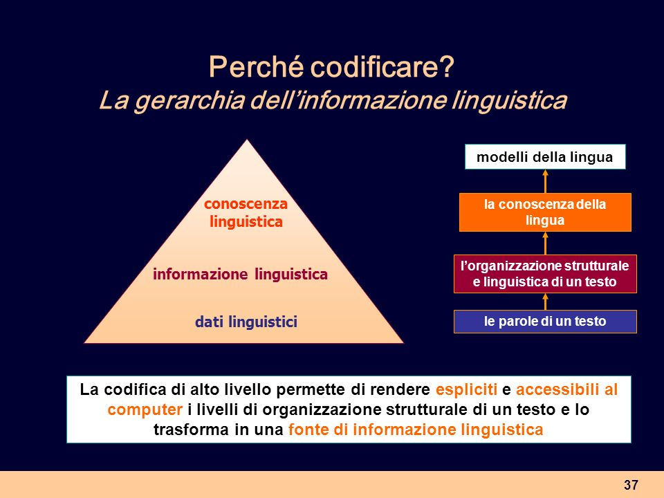 37 dati linguistici informazione linguistica conoscenza linguistica le parole di un testo lorganizzazione strutturale e linguistica di un testo la con