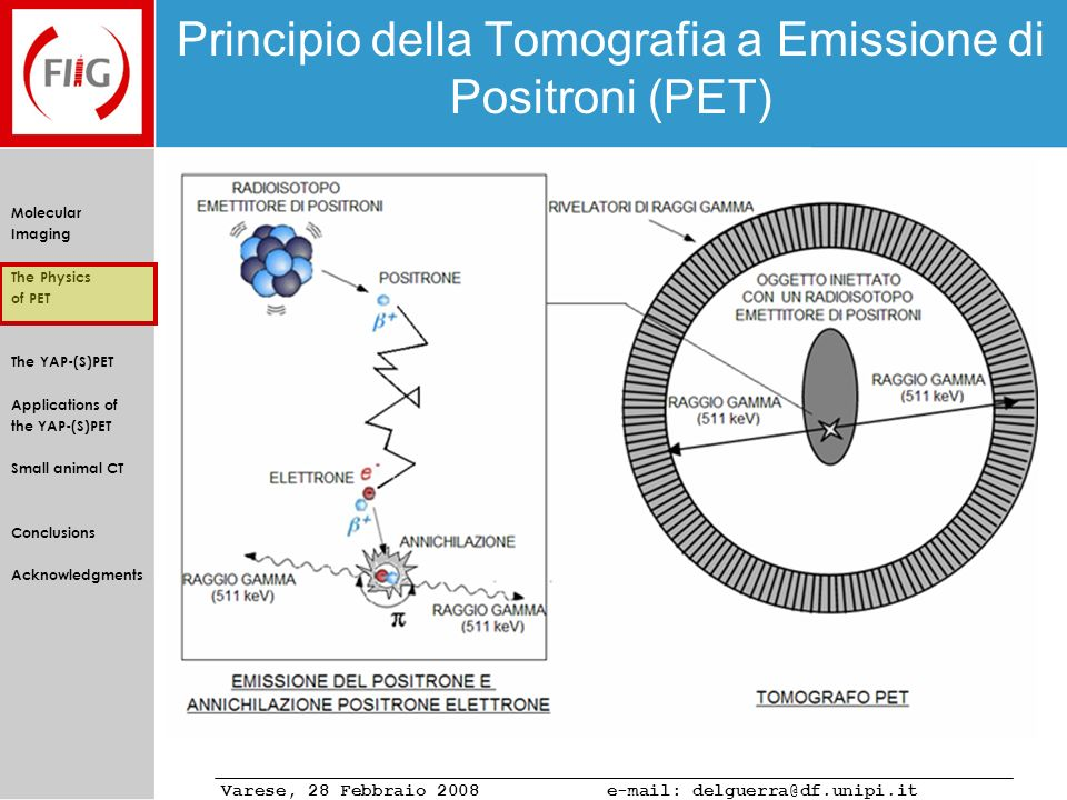 Varese, 28 Febbraio 2008 e-mail: delguerra@df.unipi.it Molecular Imaging The Physics of PET The YAP-(S)PET Applications of the YAP-(S)PET Small animal CT Conclusions Acknowledgments Performance: PET spatial resolution Comparison of the radial, tangential, and axial FWHM of the reconstructed images, obtained with the FBP-2D (top left) using Single Slice (SSRB) and Fourier (FORE) rebinning (50-850 keV energy window).