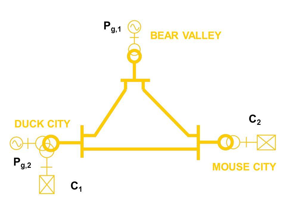 BEAR VALLEY DUCK CITY MOUSE CITY C1C1 P g,2 C2C2 P g,1