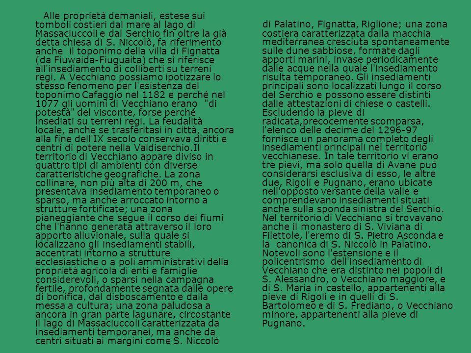 Alle proprietà demaniali, estese sui tomboli costieri dal mare al lago di Massaciuccoli e dal Serchio fin oltre la già detta chiesa di S. Niccolò, fa