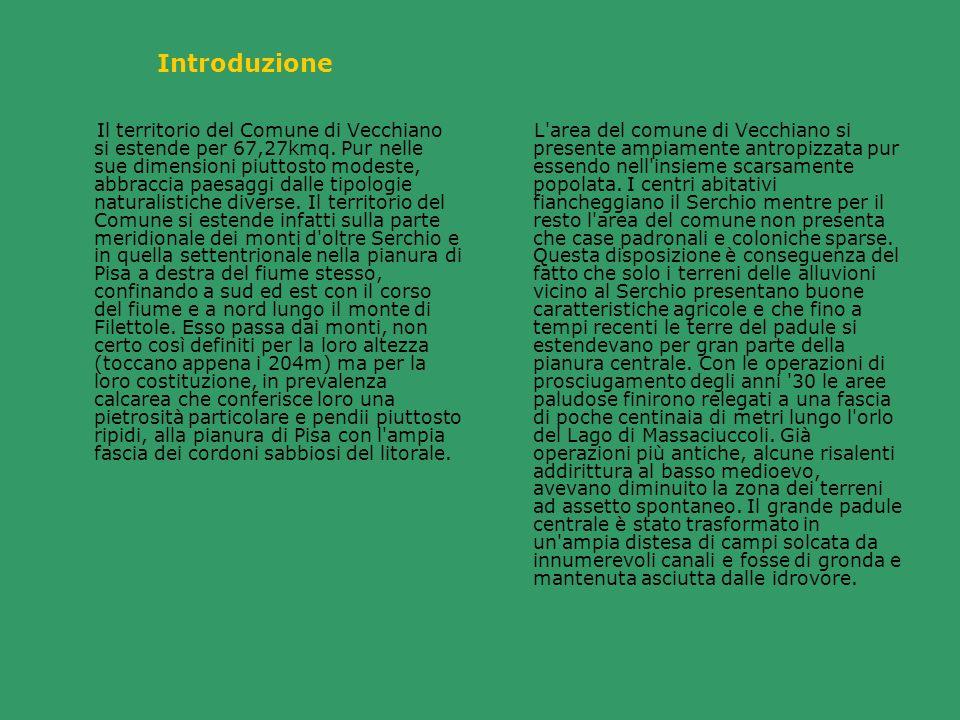 Introduzione Il territorio del Comune di Vecchiano si estende per 67,27kmq. Pur nelle sue dimensioni piuttosto modeste, abbraccia paesaggi dalle tipol