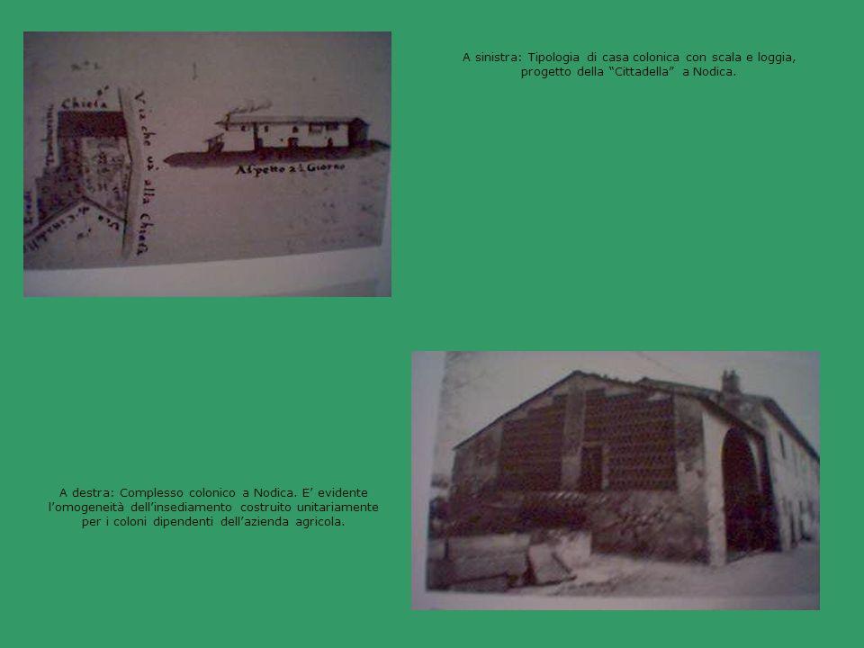 A sinistra: Tipologia di casa colonica con scala e loggia, progetto della Cittadella a Nodica. A destra: Complesso colonico a Nodica. E evidente lomog