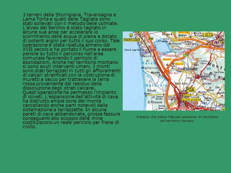 I terreni della Storrigiana, Traversagna e Lama Torta e quelli delle Tagliate sono stati sollevati con il metodo delle colmate. L'alveo del Serchio è