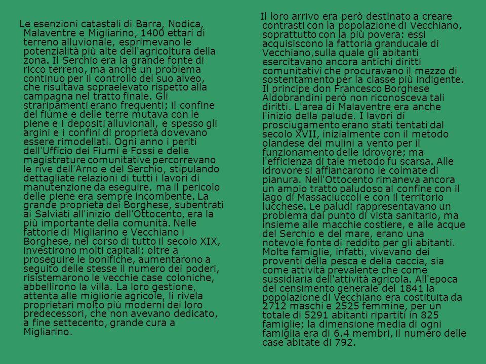 Le esenzioni catastali di Barra, Nodica, Malaventre e Migliarino, 1400 ettari di terreno alluvionale, esprimevano le potenzialità più alte dell'agrico