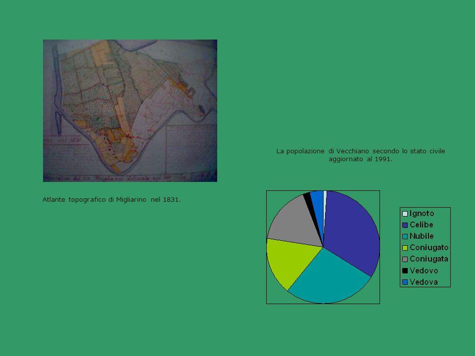 Atlante topografico di Migliarino nel 1831. La popolazione di Vecchiano secondo lo stato civile aggiornato al 1991.