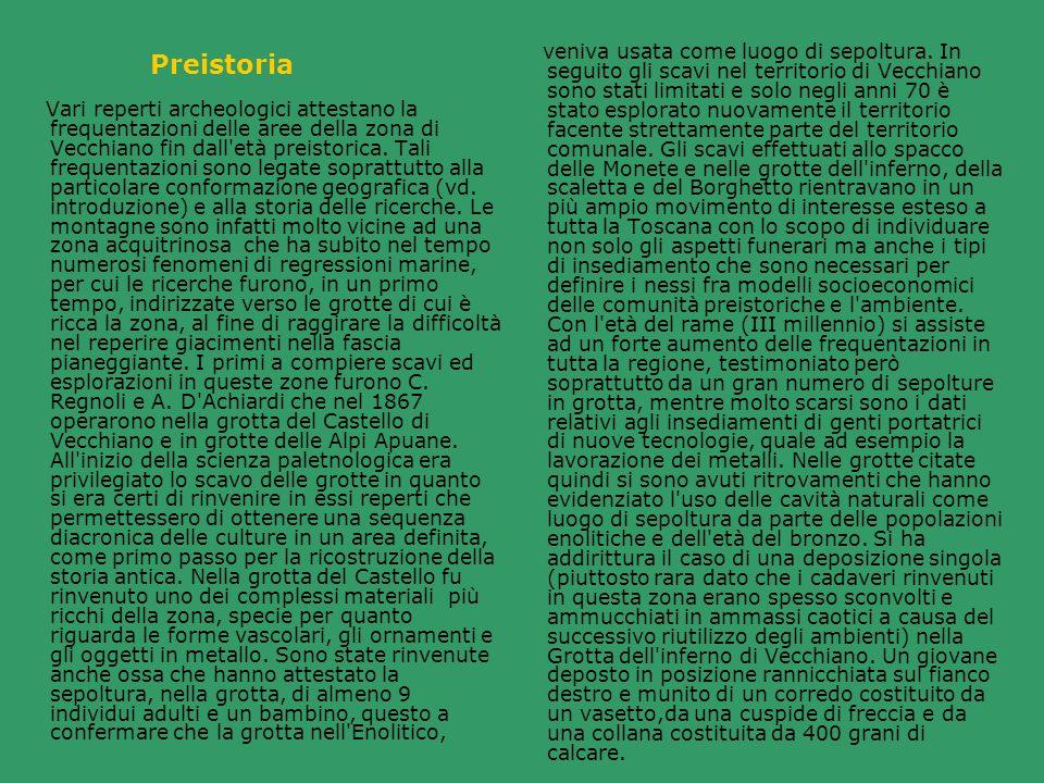 Il quadro culturale della toscana nord- occidentale, per cui anche di Vecchiano, si differenzia infatti da quello a sud dell Arno dove si hanno tombe a fossa scavate nella terra o nel tufo, coperte o rivestite da lastre contenti corredi in cui prevalgono le armi, litiche o metalliche.
