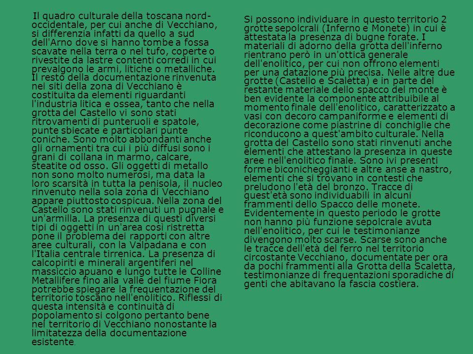 Il quadro culturale della toscana nord- occidentale, per cui anche di Vecchiano, si differenzia infatti da quello a sud dell'Arno dove si hanno tombe