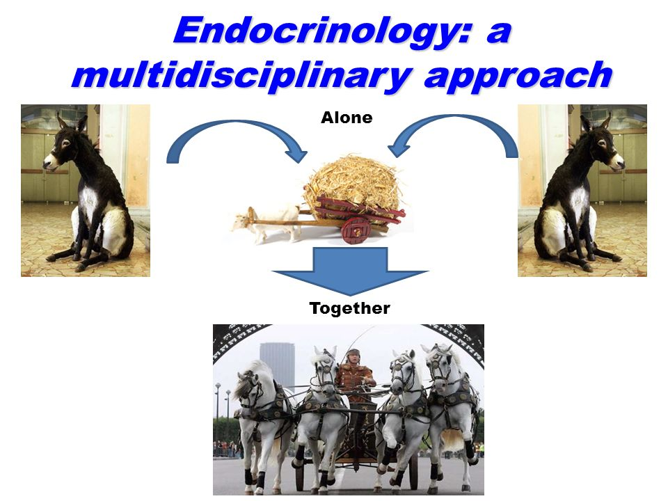 Endocrinology: a multidisciplinary approach Alone Together