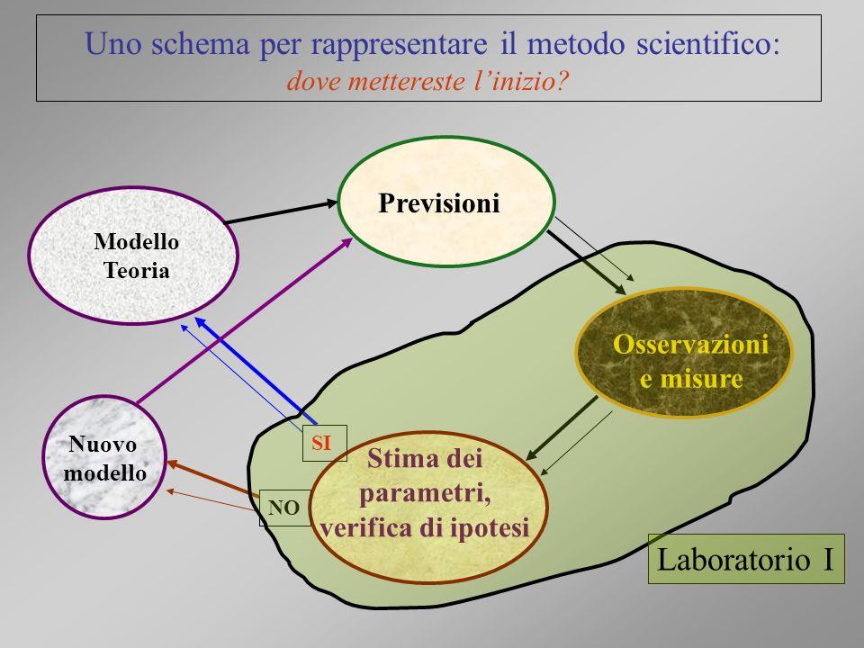 Uno schema per rappresentare il metodo scientifico: dove mettereste linizio? Osservazioni e misure Previsioni Stima dei parametri, verifica di ipotesi