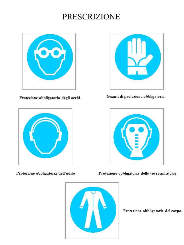 PRESCRIZIONE Protezione obbligatoria degli occhi Guanti di protezione obbligatoria Protezione obbligatoria delludito Protezione obbligatoria delle vie