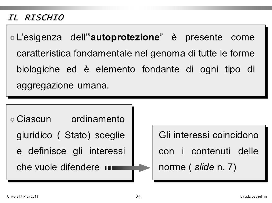 by adarosa ruffiniUniversità Pisa 2011 34 Lesigenza dellautoprotezione è presente come caratteristica fondamentale nel genoma di tutte le forme biologiche ed è elemento fondante di ogni tipo di aggregazione umana.