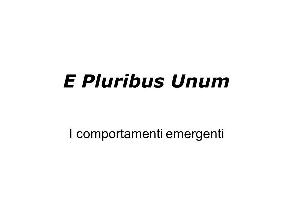 E Pluribus Unum I comportamenti emergenti