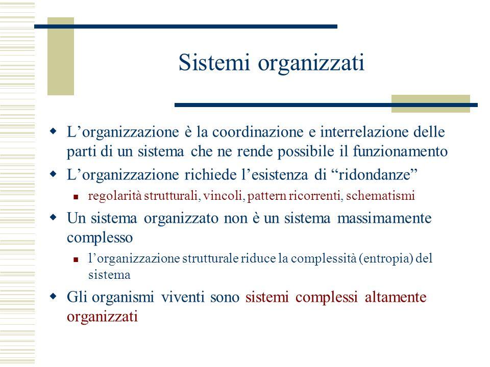 Sistemi organizzati Lorganizzazione è la coordinazione e interrelazione delle parti di un sistema che ne rende possibile il funzionamento Lorganizzazione richiede lesistenza di ridondanze regolarità strutturali, vincoli, pattern ricorrenti, schematismi Un sistema organizzato non è un sistema massimamente complesso lorganizzazione strutturale riduce la complessità (entropia) del sistema Gli organismi viventi sono sistemi complessi altamente organizzati