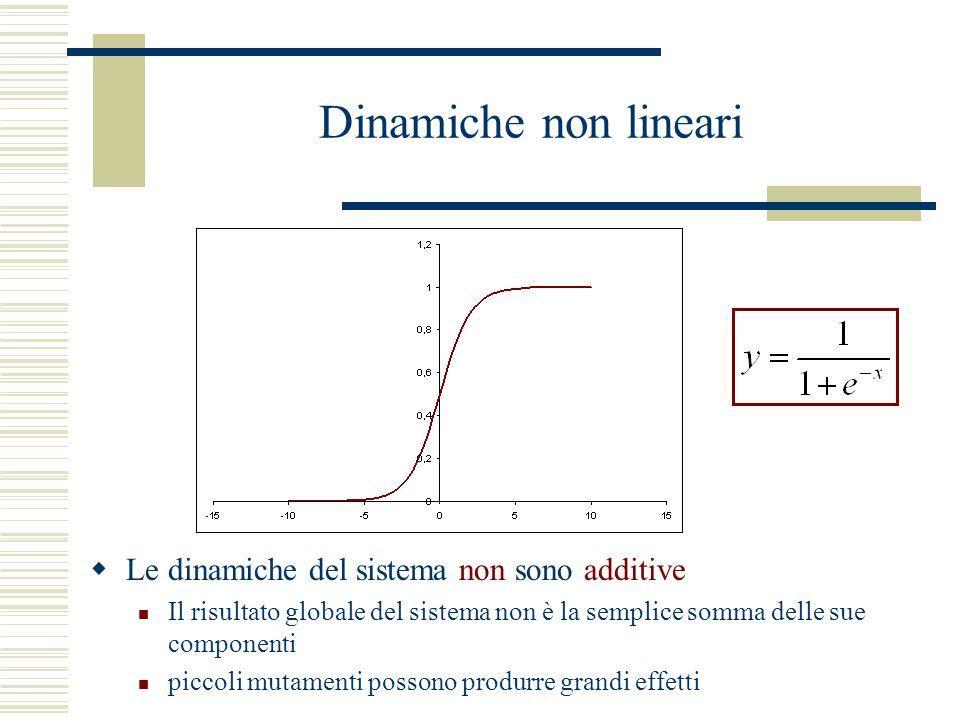 Dinamiche non lineari Le dinamiche del sistema non sono additive Il risultato globale del sistema non è la semplice somma delle sue componenti piccoli mutamenti possono produrre grandi effetti