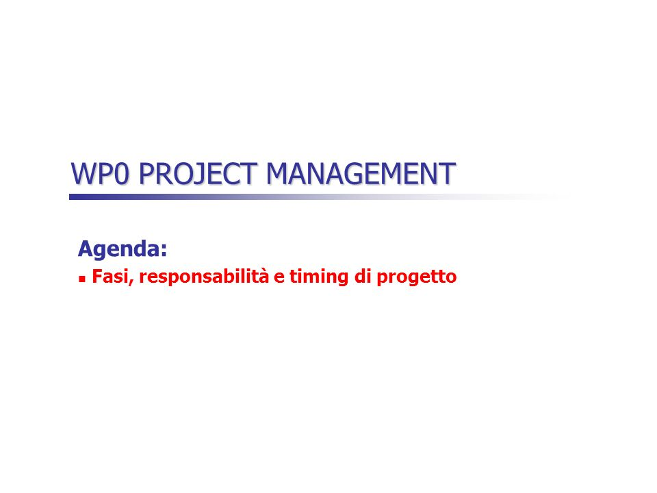 WP0 PROJECT MANAGEMENT Agenda: Fasi, responsabilità e timing di progetto