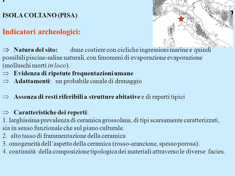 I ISOLA COLTANO (PISA) Indicatori archeologici: Natura del sito: dune costiere con cicliche ingressioni marine e quindi possibili piscine-saline natur