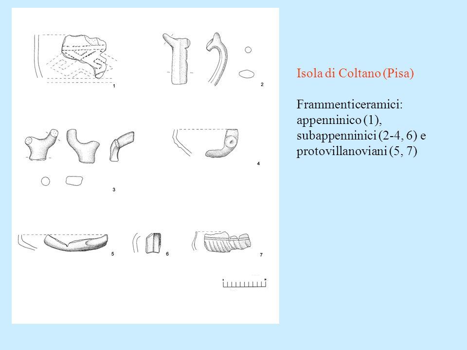 Isola di Coltano (Pisa) Frammenticeramici: appenninico (1), subappenninici (2-4, 6) e protovillanoviani (5, 7)