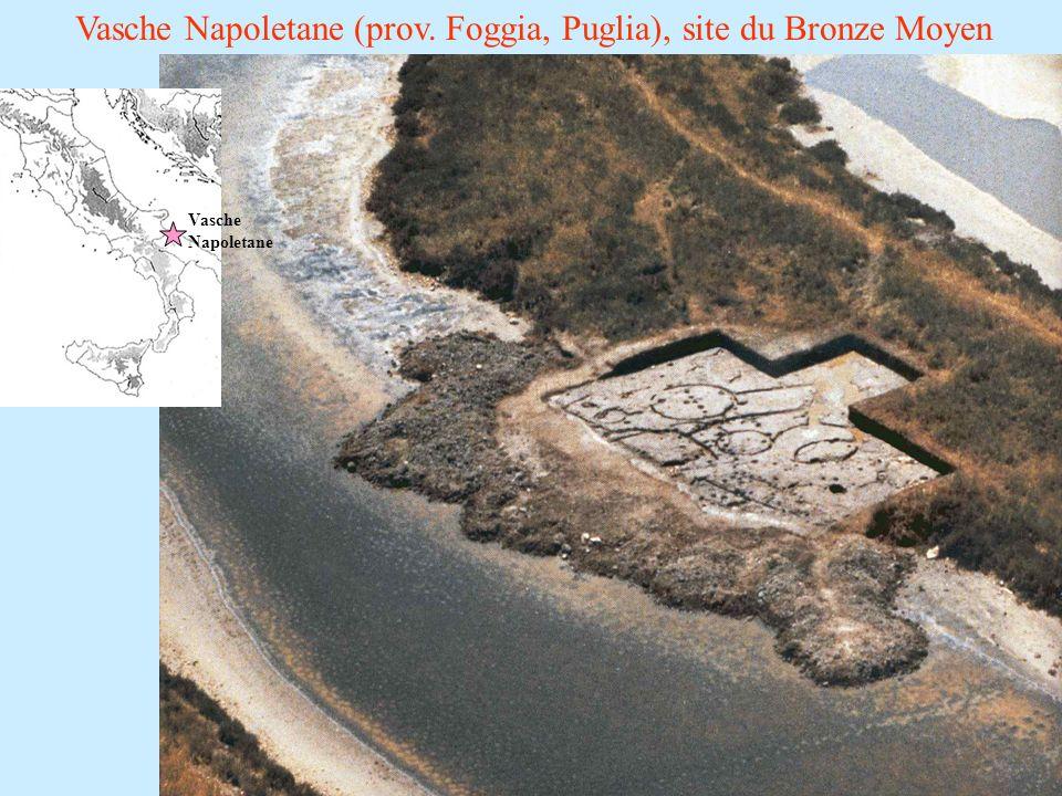 Vasche Napoletane (prov. Foggia, Puglia), site du Bronze Moyen Vasche Napoletane