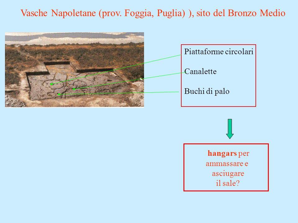 Vasche Napoletane (prov. Foggia, Puglia) ), sito del Bronzo Medio Piattaforme circolari Canalette Buchi di palo hangars per ammassare e asciugare il s
