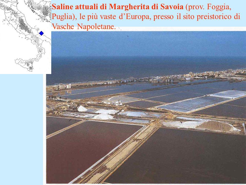 Saline attuali di Margherita di Savoia (prov. Foggia, Puglia), le più vaste dEuropa, presso il sito preistorico di Vasche Napoletane.