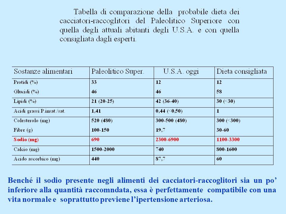 Benché il sodio presente negli alimenti dei cacciatori-raccoglitori sia un po inferiore alla quantità raccomndata, essa è perfettamente compatibile co