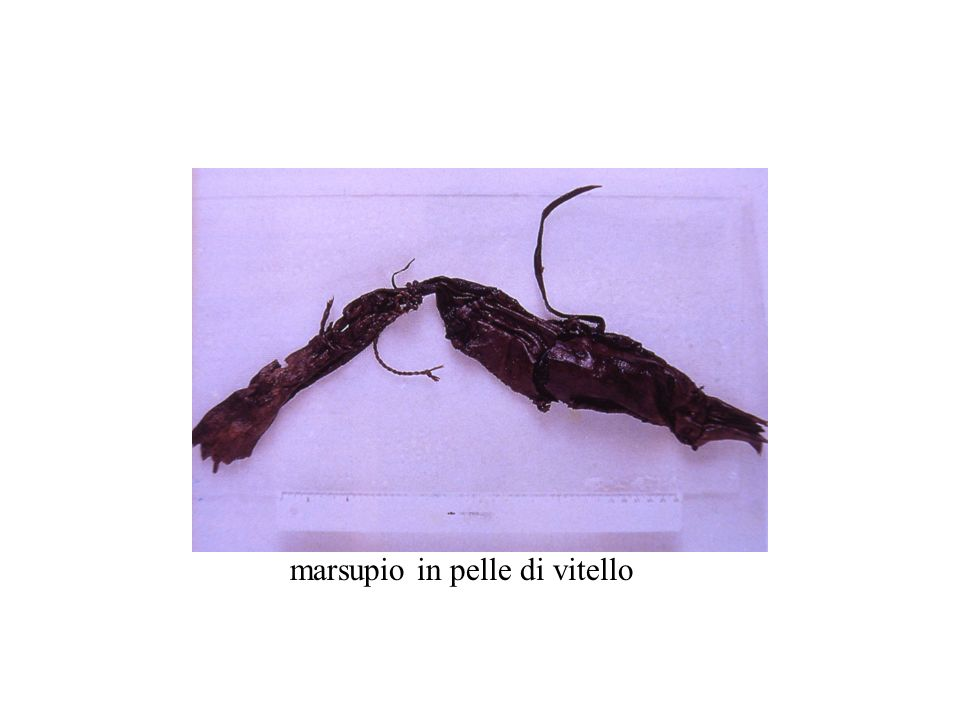 marsupio in pelle di vitello