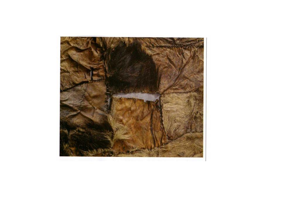 esca per laccensione del fuoco, ottenuta da Fomes fomentarius; conserva cristalli di pirite.