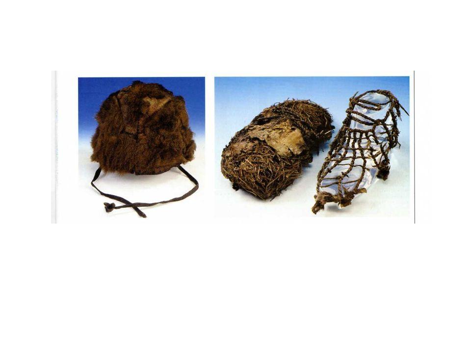 Due pezzi di Piptoporus betulinus, in cui è infilata una striscia di pelle, probabilmente portata al polso sinistro.