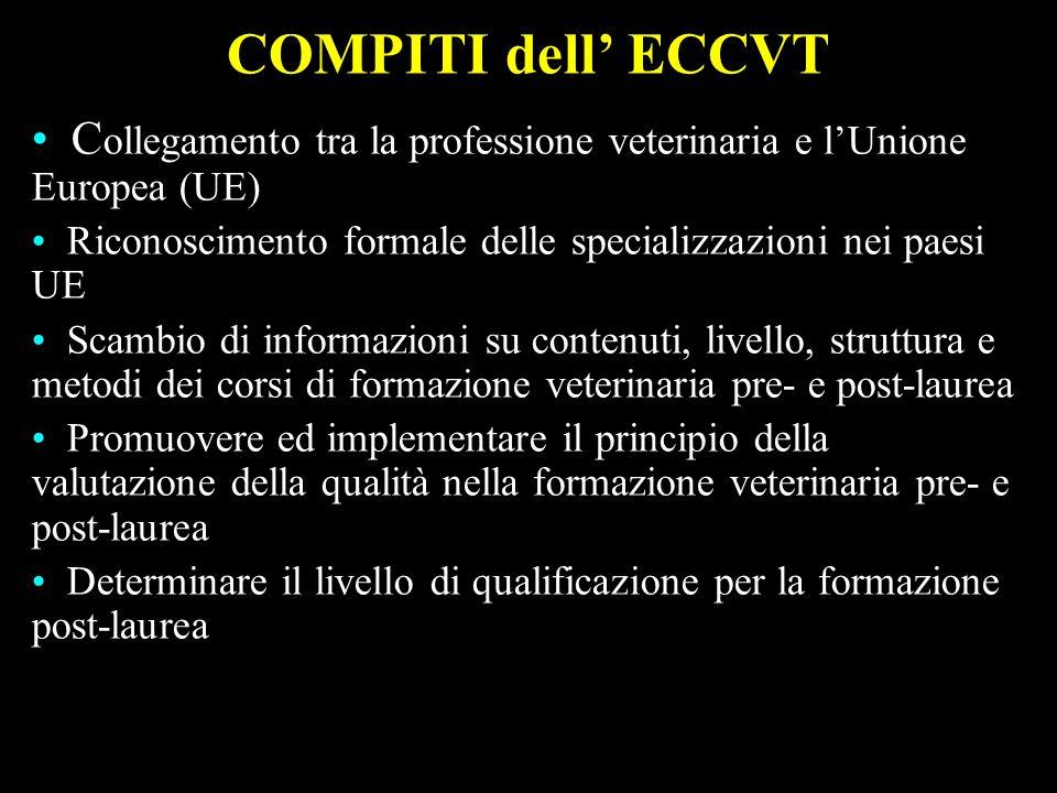 ollegamento tra la professione veterinaria e lUnione Europea (UE) C ollegamento tra la professione veterinaria e lUnione Europea (UE) Riconoscimento f