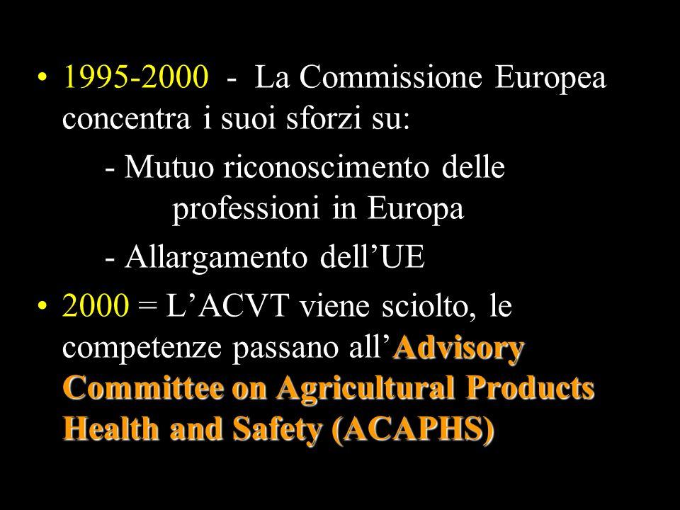 1995-2000 - La Commissione Europea concentra i suoi sforzi su: - Mutuo riconoscimento delle professioni in Europa - Allargamento dellUE Advisory Commi
