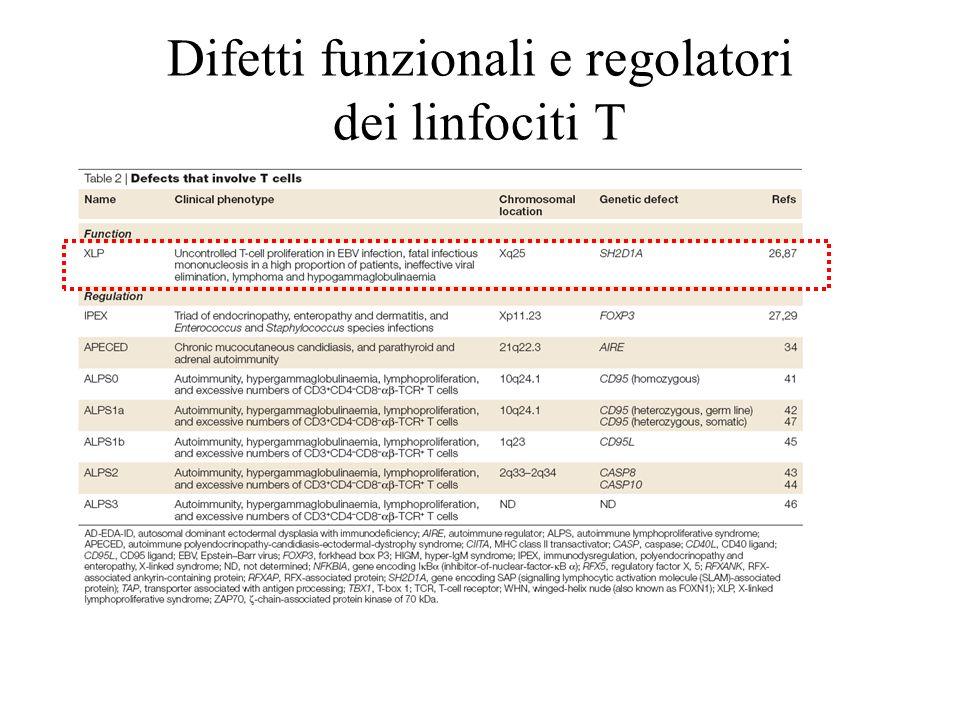 Difetti funzionali e regolatori dei linfociti T