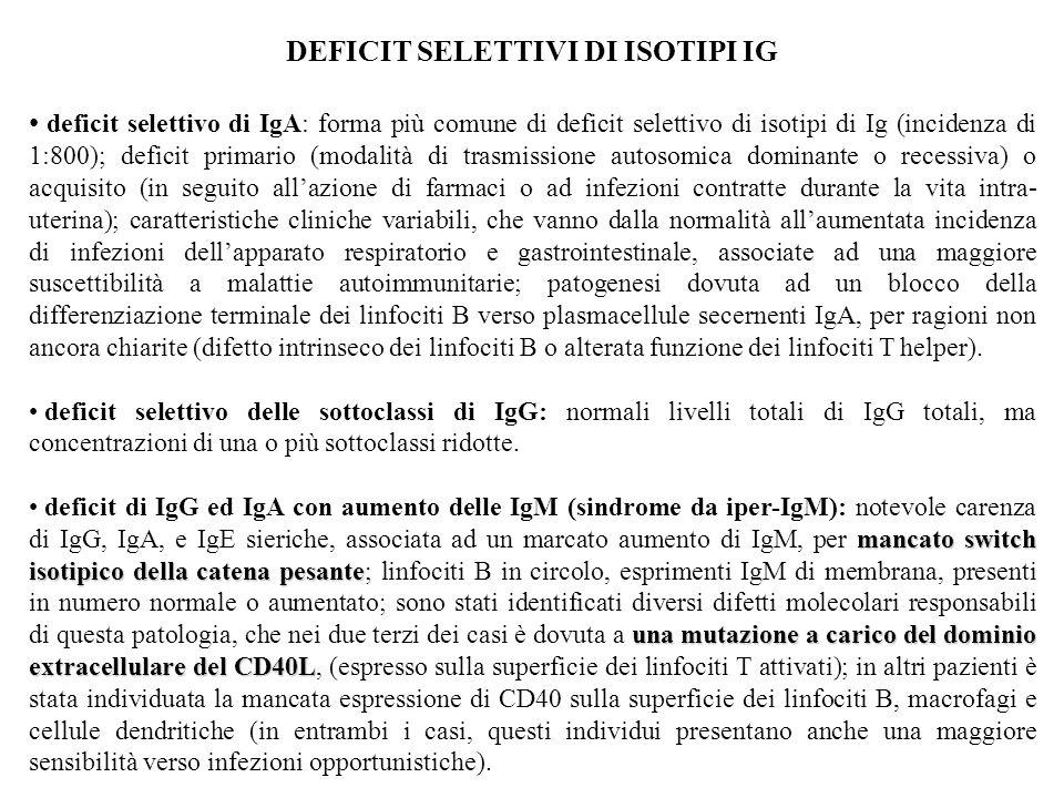 36 Difetti nei componenti del complemento (suscettibilità a infezioni e accumulo di immunocomplessi)