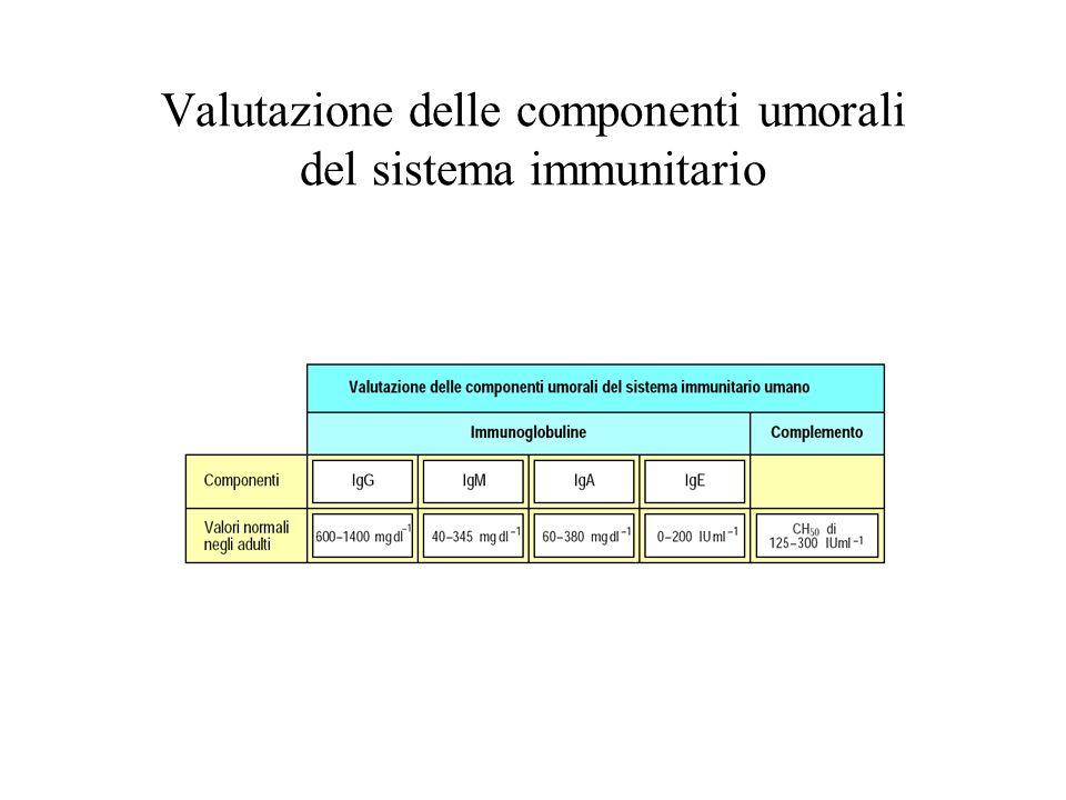 IMMUNODEFICIENZA quadro clinico e anatomo-patologico eterogeneo aumentata suscettibilità alle infezioni aumentata incidenza di neoplasie aumentata incidenza di manifestazioni autoimmuni IMMUNODEFICENZA PRIMITIVA O CONGENITA (dovuti ad un difetto ereditario) IMMUNODEFICIENZA SECONDARIA O ACQUISITA (causati da una noxa esterna)