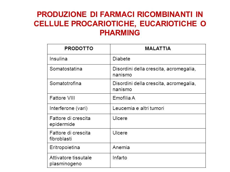PRODUZIONE DI FARMACI RICOMBINANTI IN CELLULE PROCARIOTICHE, EUCARIOTICHE O PHARMING PRODOTTOMALATTIA InsulinaDiabete SomatostatinaDisordini della cre