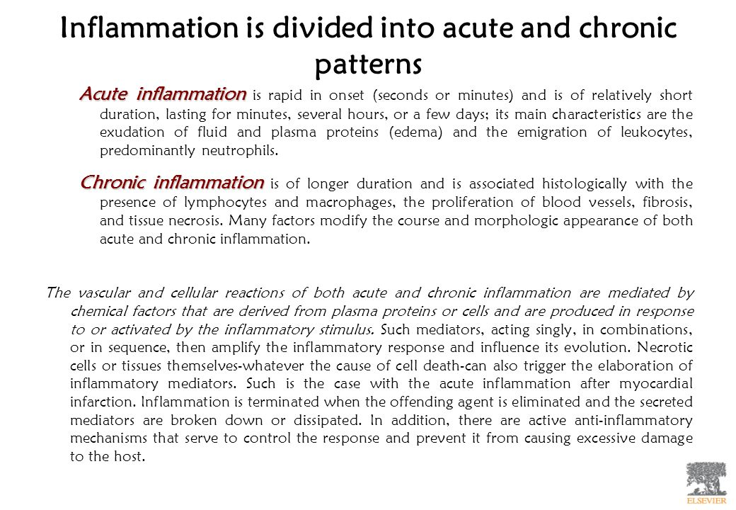 Inflammation is divided into acute and chronic patterns Acute inflammation Acute inflammation is rapid in onset (seconds or minutes) and is of relativ