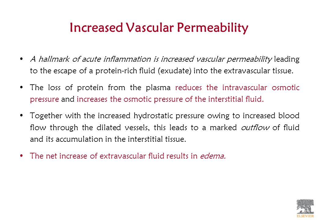 Increased Vascular Permeability A hallmark of acute inflammation is increased vascular permeability leading to the escape of a protein-rich fluid (exu