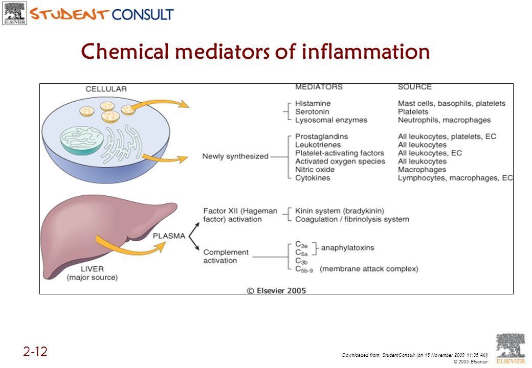 Chemical mediators of inflammation Downloaded from: StudentConsult (on 15 November 2009 11:35 AM) © 2005 Elsevier 2-12