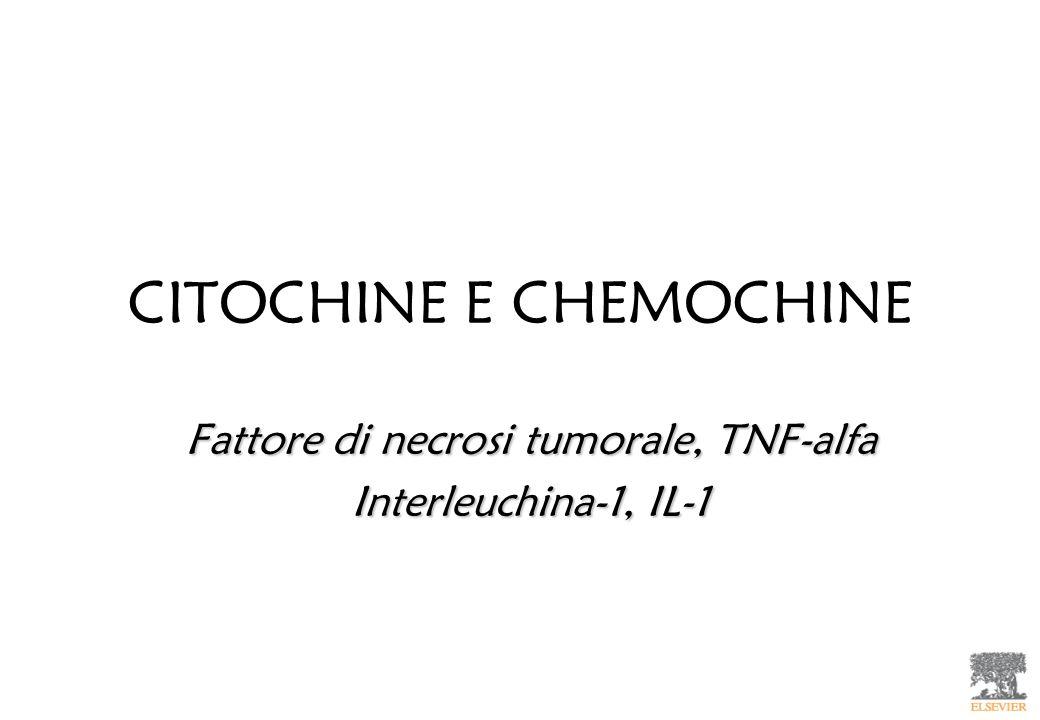 CITOCHINE E CHEMOCHINE Fattore di necrosi tumorale, TNF-alfa Interleuchina-1, IL-1