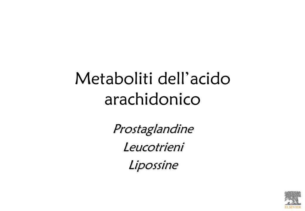 Metaboliti dellacido arachidonico ProstaglandineLeucotrieniLipossine