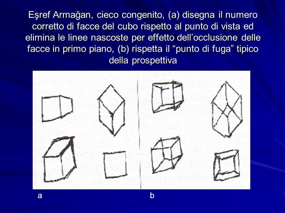 Eşref Armağan, cieco congenito, (a) disegna il numero corretto di facce del cubo rispetto al punto di vista ed elimina le linee nascoste per effetto dellocclusione delle facce in primo piano, (b) rispetta il punto di fuga tipico della prospettiva ab