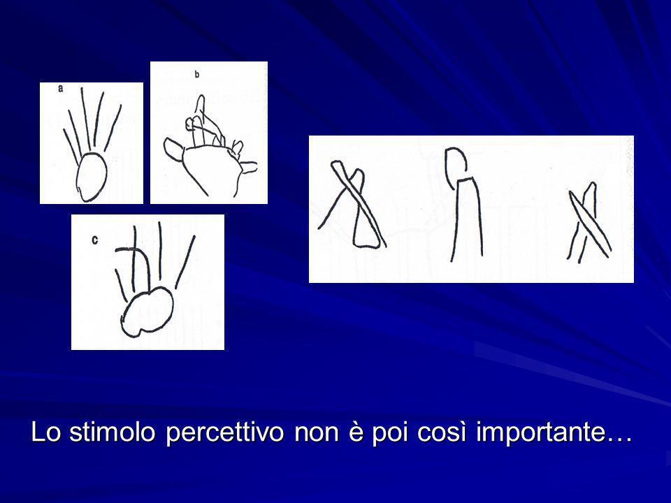Lo stimolo percettivo non è poi così importante…