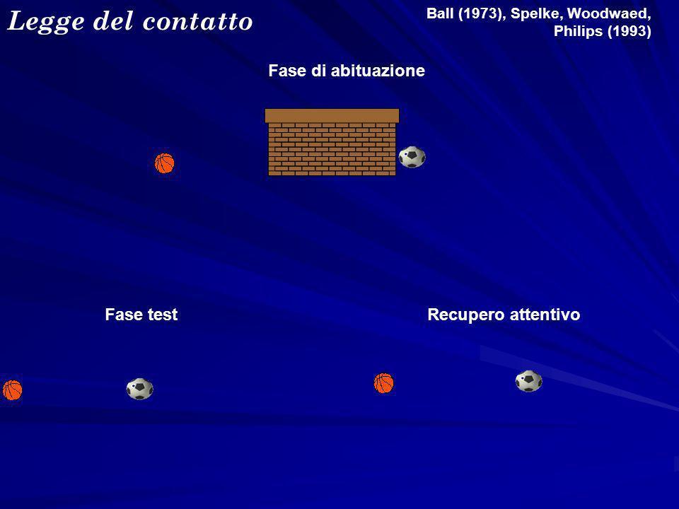 Fase testRecupero attentivo Fase di abituazione Ball (1973), Spelke, Woodwaed, Philips (1993) Legge del contatto