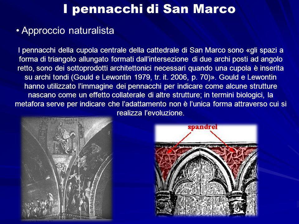 I pennacchi di San Marco I pennacchi della cupola centrale della cattedrale di San Marco sono «gli spazi a forma di triangolo allungato formati dallintersezione di due archi posti ad angolo retto, sono dei sottoprodotti architettonici necessari quando una cupola è inserita su archi tondi (Gould e Lewontin 1979, tr.