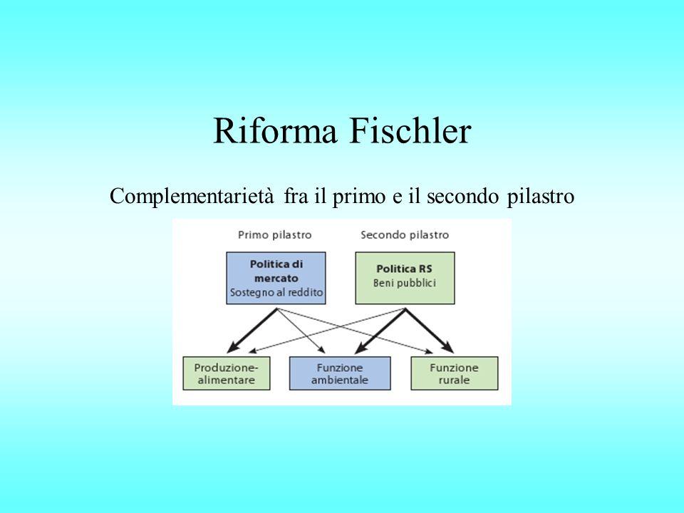Riforma Fischler Complementarietà fra il primo e il secondo pilastro