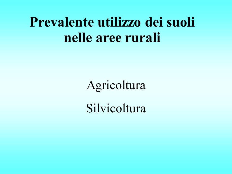 Prevalente utilizzo dei suoli nelle aree rurali Agricoltura Silvicoltura
